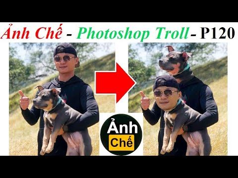 💥Ảnh Chế  – Photoshop Troll P120, anh che, Fjamie013