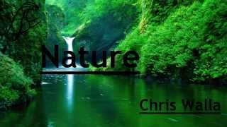 Nature - Chris Walla