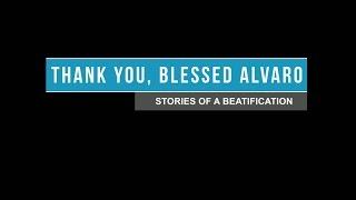 Gracias, don Álvaro. Historias de una beatificación
