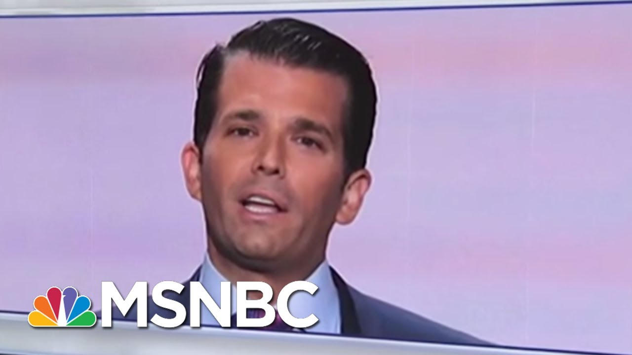 Here's Who Was At The June 2016 Trump Tower Meeting | Velshi & Ruhle | MSNBC thumbnail