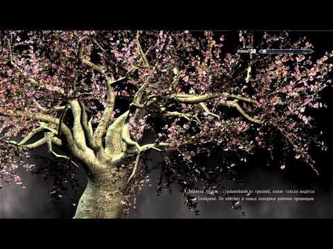 Магия мозга и лабиринты жизни н.бехтерева
