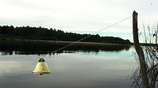 Закидушку для рыбалки это
