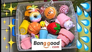 DAPET SQUISHY LICENSED! Banggood.com Squishy Package! AMAZING!