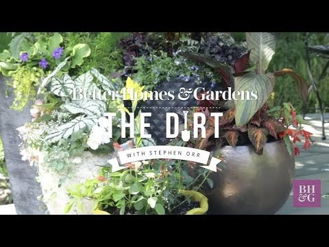 How to Plant a Container | The Dirt | Better Homes & Gardens