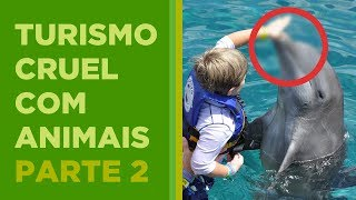 TURISMO CRUEL COM ANIMAIS - PARTE 2
