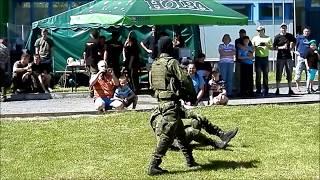 Ukázka bojového umění - Musado - Králíky 27.05.2017 - Demonstration of Musado martial art