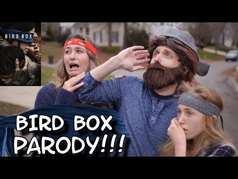 WHAT DID They See In BIRD BOX?? (WHAT Was In The SKY?!?!)