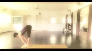 2013 Madame Starfish Yoga Sun Salutation Sequence 720 nomusic