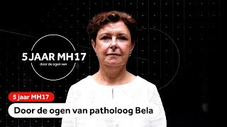 MH17: Patholoog Bela onderzocht slachtoffers van de vliegramp bij het NFI