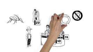 Vídeo: Explicação da Importância do Modo de Ação