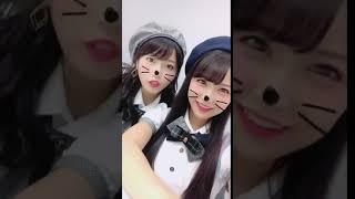 白間美瑠NMB48大好き、大好き、よこはんと。#おい!ネコ!。2017.09.03
