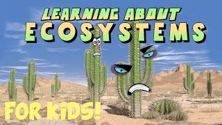 Learning About Ecosystems