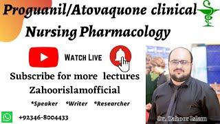 Atovaquone Antimalarial drugs