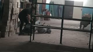 """Zavs Last Hathy на турнире """"Вечерняя Одесса"""" по программе """"Відсіч"""""""