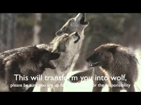 Wolf Moon Spell