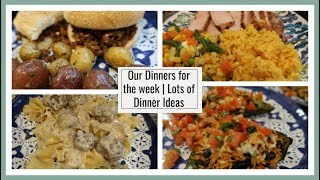 What I cooked & Ate for Dinner this week   Dinner Ideas for anyone!
