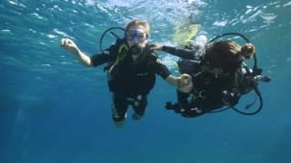 Atlantis Divers - The best dives of Noronha