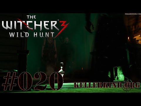 The Witcher 3 [HD|60FPS] #020 Frühjahrsputz ★ Let's Play The Witcher 3