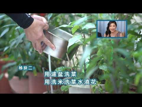 台南市長黃偉哲推行節約用水,大家一起來省水大作戰