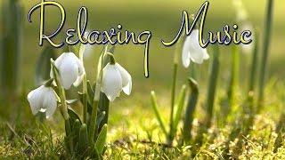 Uklidňující nervy s relaxační hudbou