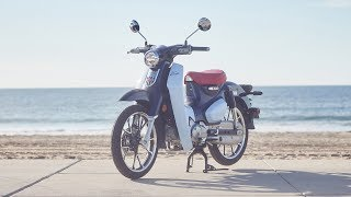 2019 Honda Super Cub C125 Review | MC Commute