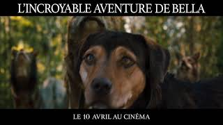 Trailer of L'Incroyable Aventure de Bella (2019)