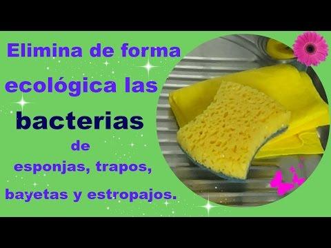 Elimina en 3 pasos las bacterias de los trapos y estropajos de forma ecológica