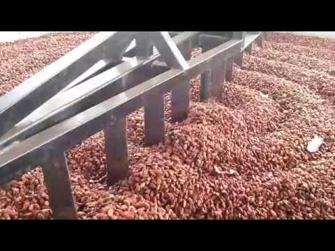 Funcionamiento Secadora Rotativa de Cacao