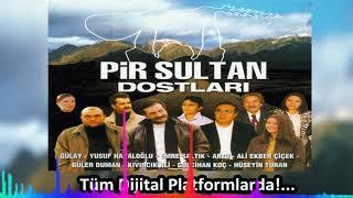 Güler Duman - Şu Yalan Dünyaya - ''Pir  Sultan Dostları'' (Official Audıo)