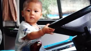 Ver un Bebé conducir un autobús