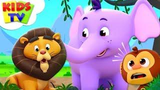 Zoo Song   The Supremes Cartoons   Kindergarten Nursery Rhymes For Children - Kids TV