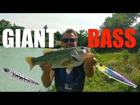 Fishings di belarusky