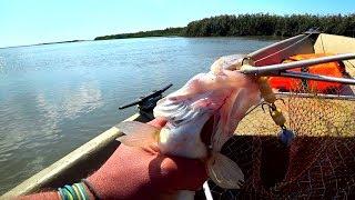 Рыбалка на раскатах в астраханская область
