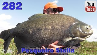 Programa Fishingtur na Tv 282 - Pesqueiro Stella