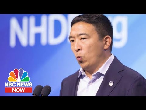 Andrew Yang Explains Why Digital Data Is Personal Property | NBC News Now