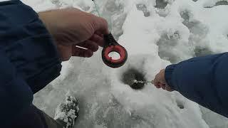 Рыбалка в рязанской области поярково