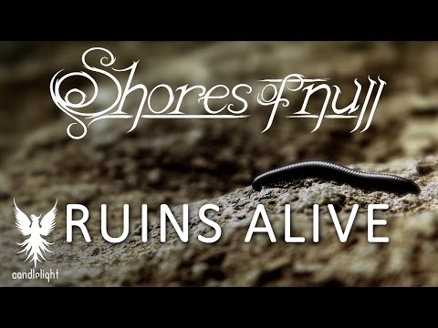 Video Shores of Null