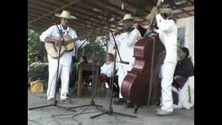 Vaya Con Dios. Spanish Lyrics. Sung by AaronStamp