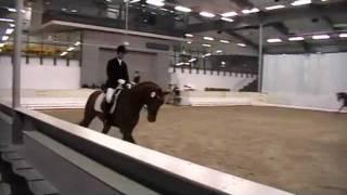 video of Don Juan de Hus