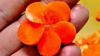 梅人参 作り方  Carrots cut way