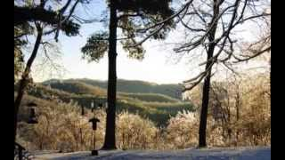2 BED Mountain Cottage ~ 50 MILE VIEWS, near BOONE, NC $149,900