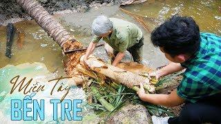 Về miền Tây ăn củ hủ dừa |Coconut tree core, amazing flavour in your mouth | Ben Tre Vietnam