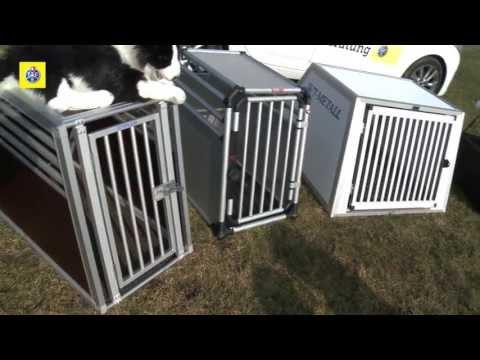 TCS-Test: Hundeboxen
