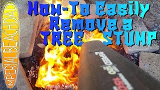 EASY DIY Tree Stump Removal!  A Simple How-To Video :)