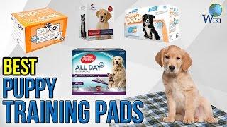 10 Best Puppy Training Pads 2017