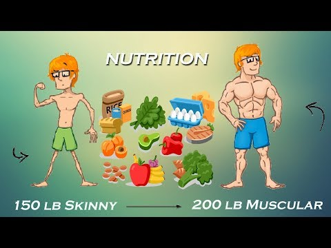Bodybuilding Diet   Importance of Diet in Muscle Building