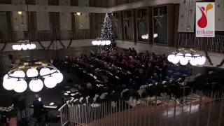 preview picture of video 'Volkskerstzang 2014 Hengelo - Meer dan 2000 winters geleden'