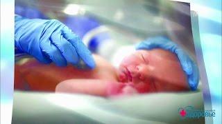 Здоровье. Спасение недоношенных детей. (29.01.2017)