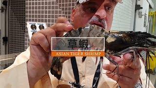 五種最大的蝦