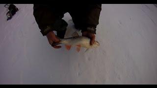 Ловля голавля зимой на малых реках